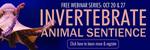 Invertebrate Animal Sentience